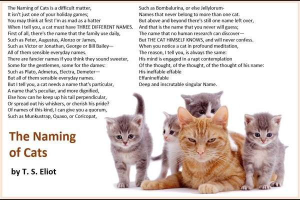 The Naming of Cats, T. S. Eliot