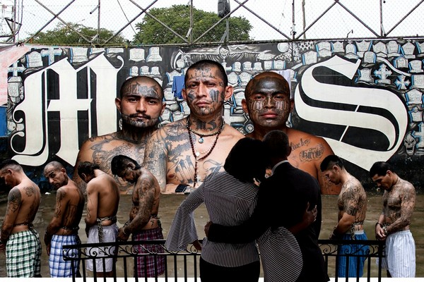 Obama's Legacy: MS-13 Gangs Allowed to Grow in America