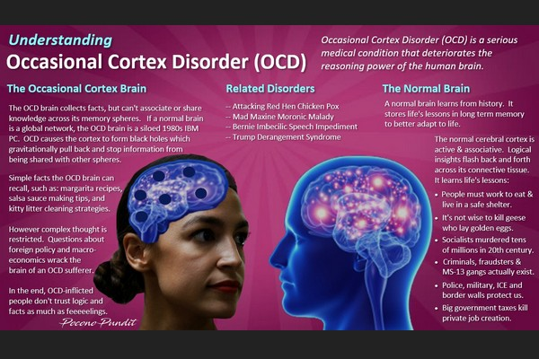 Understanding Occasional Cortex Disorder: A Public Health Poster