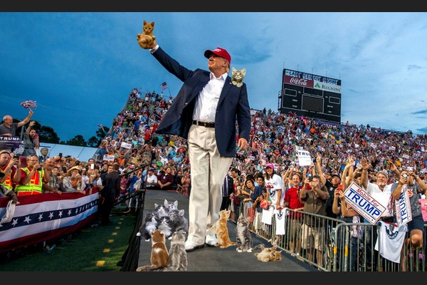 Trumpazine: Cats Mysteriously Attracted to Trump in Mobile Alabama Rally
