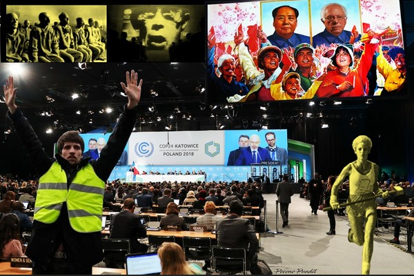 Yellow Vests at the Global Climate Change Conference